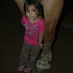 Hélène's Stables Homeschool Day: June 2nd from 10am to 2pm